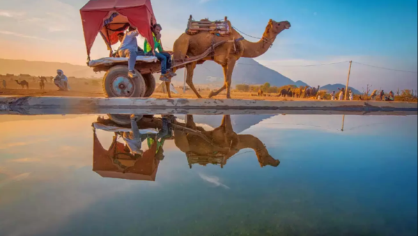 Top 5 Pushkar Attractions You Must See