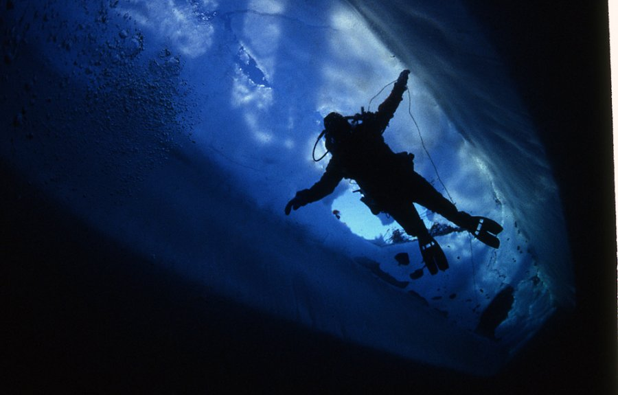 Ice diving and the northern lights attract visitors to the North Pole